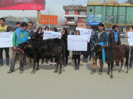 The Afghan Peace Volunteers: protesting in the streets of Kabul against the killing of two Afghan cattle-herding children by U.S.