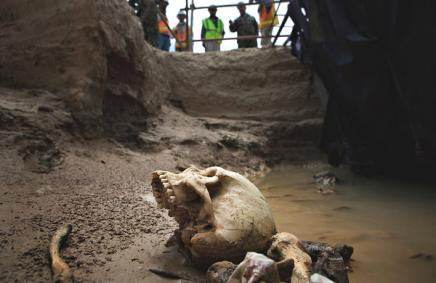 A human skull and bones at a mass grave near the Afghan town of Mazar-i-Sharif. Such graves still litter the countryside: Kuni Takahashi for The New