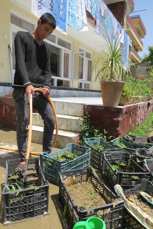Nisar Works in the Borderfree Center Garden